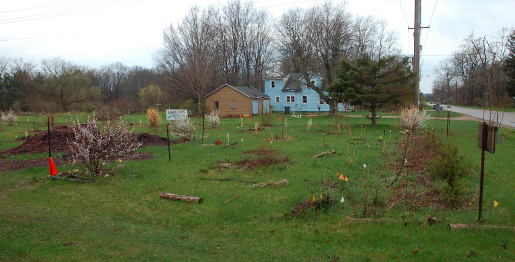 PJ's Garden in April