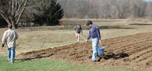 Grain Co-op Planting