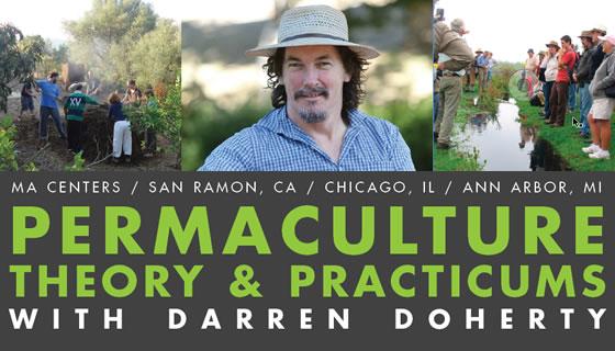 Darren Doherty Workshops